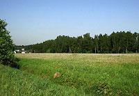 ...платной скоростной автодороги Москва-Санкт-Петербург, которая будет проходить параллельно Ленинградке.